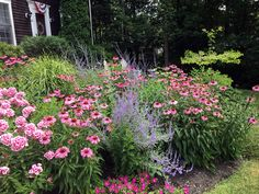 Embracing the garden from all angles | FineGardening