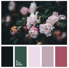 :-) #shadesoffloralpaintcolours