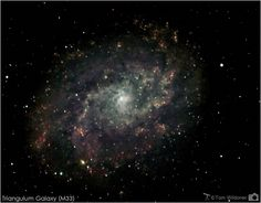 The Triangulum Pinwheel Galaxy (M33)