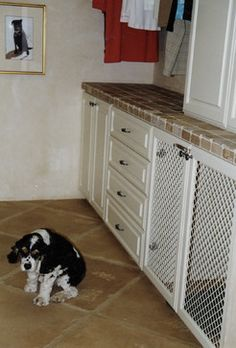 Built In Dog Kennel Design Ideas, Pictures, Remodel, and Decor - page 29