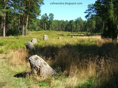Stone circles in Odry - the most famous sacred place of the Goths in Poland