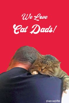 Hey Cat Dad! Now is the Time to Step Out of Cat Mom's Shadow. Today is your day! Cat dads are having a moment. See how cat dads are on the rise! Happy Dad Day, Men With Cats, Picasso Art, Cat People, Cat Dad, Cat Life, Cool Cats, Helpful Tips, Cat Lovers