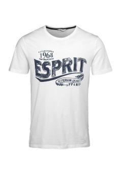 Davide Martini for Esprit - Baumwoll Jersey Logoprint T-Shirt im Online Shop kaufen