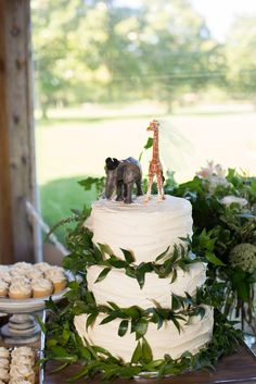 Zoo themed wedding cake - Wedding reception in the pavilion at the Virginia Zoo