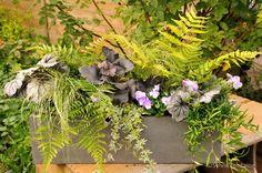 jardinière d'automne extrait du Cd- livre numérique Fleurs du Jardin (plus de 160 créations) retrouver toutes les plantes utilisées dans le carnet botanique du livre numérique en vente sur le site