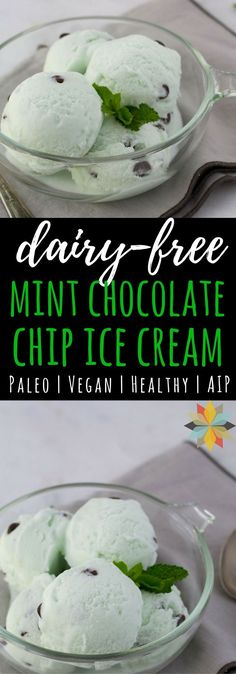 Vegan Mint Chocolate Chip Ice Cream. Dairy free, low carb, AIP, paleo, and THM:S!