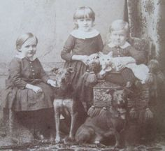 ANTIQUE WHITE CITY KITTY JACK RUSSELL DOGS 3 KIDS CHICAGO CAT CABINET CARD PHOTO (via Antique White City Kitty Jack Russell Dogs 3 Kids Chicago Cat Cabinet Card Photo | eBay)