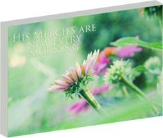 """New Mercies"" inspiration canvas wall art by Shoshannah May"
