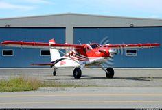De Havilland Canada DHC-2 Turbine Beaver Mk3 aircraft picture
