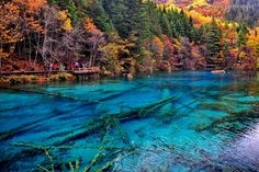 Wǔhuā Hǎi, or five flower lake is secluded haven located in Jiuzhaigou National Park in the Sechuan Provence of China. Five flower lakes multicolored waters and  unique bed of ancient tree trunks which have fallen to create a 'criss cross' pattern on the lake floor make this lake a hidden beauty.