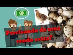 COMO GANHAR DINHEIRO COM CODORNAS - YouTube Chicken Incubator, Youtube, Quails, Chicken Pen, Earn Money, Ideas, Youtubers, Youtube Movies