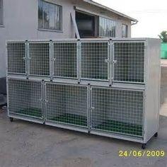 KENNELS Puppy kennel, Dog kennel designs, Cat kennel