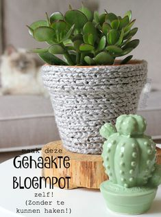 Make yourself with yarn FLOWER POT Look what I found on Freubelweb nl a free wor. Beginner Crochet Projects, Crochet For Beginners, Van Life Blog, Yarn Flowers, Plant Covers, Crochet Home Decor, Garden Ornaments, Flower Pots, Tea Pots