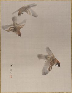 Watanab Seitei, (Japanese, 1851–1918) 'Sparrow's Flying'