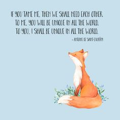 The Little Prince Fox Quote Little Prince Fox Quote – Fox – T Shirt | Teepublic