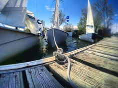 Lunch break! But these sailing machines are chopping at the bit to get back out there to shred.  #sail #sailing #sailor #sailboat #sailinglife #toronto #torontolife #lovetoronto #westwood #albacore #lakeontario #like #love #passion #follow #gopro #amazing #instadaily #potd #picoftheday #dock #weekend #ready #go #cherrystreet #beaches by grandfromage33