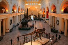 The Field Museum of Natural History, Chicago.