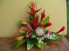 Exotic Flower Arrangements | Pictures gallery of Cool Tropical Flower…