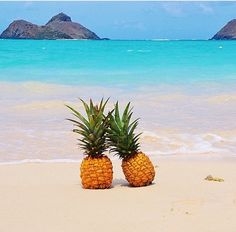 Image via We Heart It #background #bohemian #food #fruit #girl #girls #guys #indie #nature #ocean #pineapple #rocks #sand #sea #summer #travel #water #beach #friends