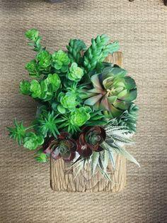 greige Succulent Workshop – Greige Design