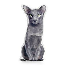 Oriental Shorthair Cat Cushion Cat Pillow Kitten Pillow Lovers Gift, Cat Lover Gifts, Cat Gifts, Cat Lovers, Oriental Shorthair Cats, Stuffed Animal Cat, Cat Cushion, Tall Boys, Cat Pillow