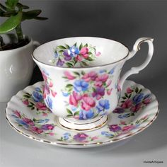 Royal Albert Springtime Series - Sweet Pea