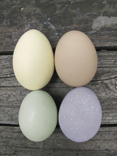 Naturally color Easter Eggs with various foods and spices Cool Easter Eggs, Easter Egg Dye, Coloring Easter Eggs, Easter Candy, Hoppy Easter, Food Crafts, Diy Arts And Crafts, Easter Crafts, Holiday Crafts