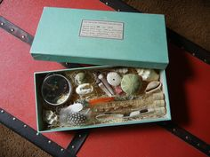 Victorian inspired Specimen Box no. 101