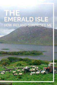 I didn't have many expectations going to Ireland. I was pleasantly surprised to discover what a magical place it is. European Destination, European Travel, Travel Europe, Travel Couple, Family Travel, Travel Articles, Travel Tips, Surprise Me, Emerald Isle