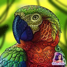 Mandala Anti Stress, Animal Doodles, Coloring Apps, Great Pic, Tropical Birds, Paint By Number, My Animal, Animal Design, Paint Colors