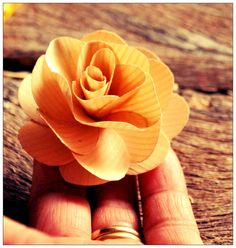 Tutorial on How to Make Wooden Roses Using Birch wood Shavings Sola Wood Flowers, Real Flowers, Diy Flowers, Paper Flowers, Flower Diy, Diy Craft Projects, Wood Projects, Craft Ideas, Fun Ideas