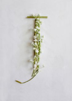 Daily Dose of Pretty | 38 | Baby's Breath Typeface | All Sorts of Pretty