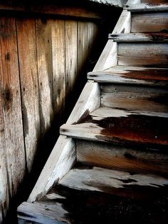 wet silvery wood