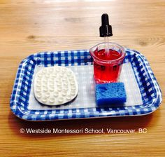 Montessori Practical Life activity - using an eye dropper to transfer water drops. The damp sponge is there, ready to clean up spills. @wmswms (Westside Montessori School, Vancouver, BC)