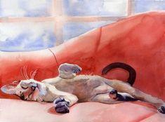 Oriental Lynx Tabby Siamese Cat Art Print of my by rachelsstudio