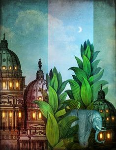 Catrin Welz-Stein Jungle city