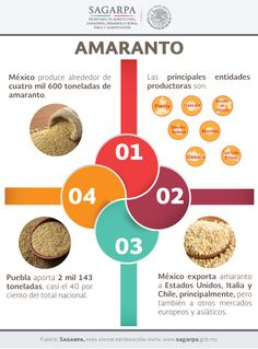 México produce alrededor de mil 600 toneladas de amaranto. SAGARPA SAGARPAMX