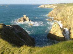 Westcoast French Brittany
