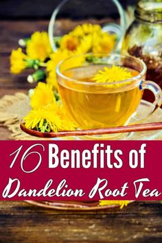 16 Benefits of Dandelions and Dandelion Root Tea Health Benefits of Dandelion - Fancy a cuppa tea? Dandelion Root Tea is one of my favorite herbal teas! These 16 benefits of dandelion root tea will have you drinking cup after cup! Calendula Benefits, Matcha Benefits, Lemon Benefits, Coconut Health Benefits, Dandelion Benefits, Dandelion Root Tea, Dandelion Jelly, Dandelion Tea Detox, Dandelion Root Extract