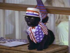 Vote for Salem