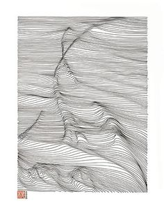 FFFFOUND! | LINESCAPING INK DRAWING on the Behance Network