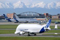 Beluga Airbus - A300-600ST Super Transporter