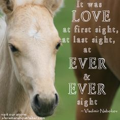 Love at first sight www.showmanshipathalter.com