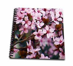 Jos Fauxtographee- Flowering Tree - Beautiful pink flower... https://www.amazon.com/dp/B01MFDC2KD/ref=cm_sw_r_pi_dp_x_Jze6ybRA23KPH