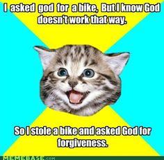 Forgiveness Kitten