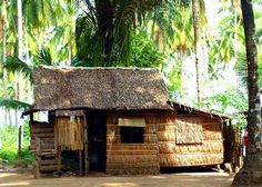 This house, typical of the Philippine countryside, is built using nipa leaves and bamboo. The nipa are processed and sewn into 'pawod', and used to cover the bamboo frame.