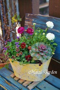 Thrilling About Container Gardening Ideas. Amazing All About Container Gardening Ideas. Basket Flower Arrangements, Flower Planters, Flower Vases, Flower Pots, Planter Pots, Garden Seeds, Garden Pots, Balcony Plants, Pot Plante