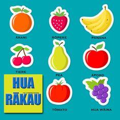 Maori language resources Fruit : Hua rākau