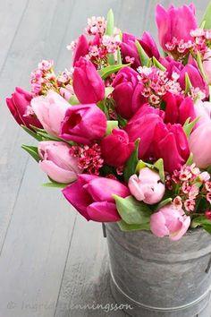 Nothing says spring like tulips! #LadyLindasLoft