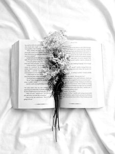Read White Aesthetic from the story Colour/Aesthetic Themes by epiphanydjh (anna🌻) with reads. Black And White Aesthetic, Aesthetic Colors, Book Aesthetic, Aesthetic Pictures, Athena Aesthetic, Aesthetic Light, Aesthetic Yellow, Aesthetic People, Flower Aesthetic